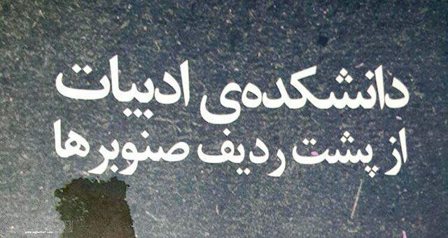 دروغ یا خیال / یادداشتی درباره کتاب دانشکده ادبیات از پشت ردیف صنوبرها