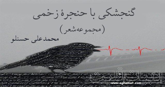گنجشکی با حنجره زخمی / محمدعلی حسنلو